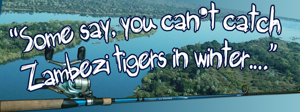 Catch Tiger on the Zambezi